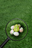 Found Easter eggs group Royalty Free Stock Photo