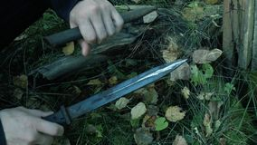 Found a German bayonet. echoes of war. found weapons. military knife. Weapon stock video footage