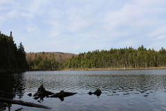 Found a pond Stock Image