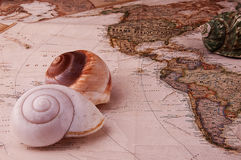 Found shells, map and travel Royalty Free Stock Image