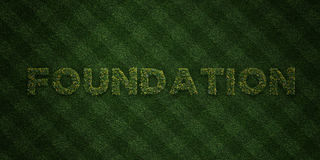 FOUNDATION - fresh Grass letters with flowers and dandelions - 3D rendered royalty free stock image. Can be used for online banner ads and direct mailers Royalty Free Stock Photo