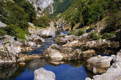 Fount. River birth,Picos de Europa,Spain Royalty Free Stock Photography