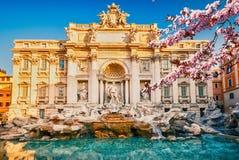 Fountain在春天的di Trevi 库存照片