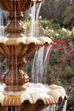 Fountain. A fountain in a rose garden royalty free stock image