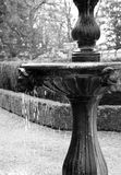 Fountain. Water fountain in black and white Stock Photography