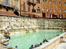 Fountain. Gaia plaza del campo in siena Royalty Free Stock Photography