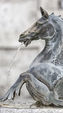 Fountain in Ascoli Piceno Royalty Free Stock Image