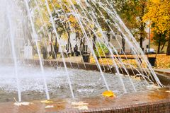 Fountain in autumn park Stock Photos