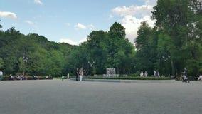 Fountain in Bernardine park stock footage