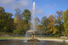 Fountain Bowl close up of golden autumn. Peterhof Royalty Free Stock Photos
