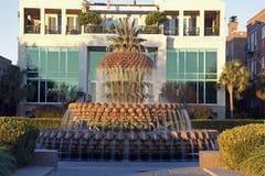 Fountain in Charleston Stock Photos