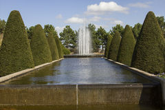 Fountain and clipped trees Stock Images