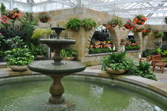Fountain in Conservatory Stock Photo