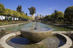 Fountain in Cordoba. Fountain in  the gardens of the alcazar de los Reyes Cristianos in Cordoba, Spain Stock Image