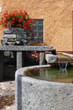 Fountain in courtyard garden Royalty Free Stock Photo