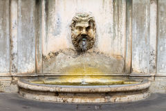 Fountain in the courtyard of the Vatican Museum Royalty Free Stock Photography