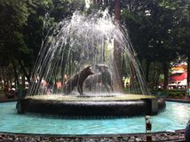 Fountain of the Coyoacan stock photography