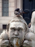 Fountain del Moro op vierkante Navone in Rome stock foto's