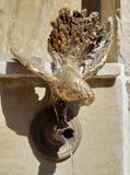 Fountain. Bronze pigeon in Veliko Tarnovo, Bulgaria Stock Image