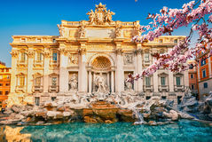 Fountain di Trevi at spring Stock Photo