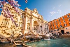 Fountain di Trevi at spring Royalty Free Stock Photos