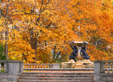 Fountain with fall trees Stock Image