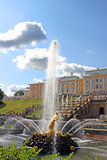 Fountain with a figure of Samson and the lion in St. Petersburg Royalty Free Stock Image