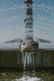 Fountain with Fish Face in city park Royalty Free Stock Photography