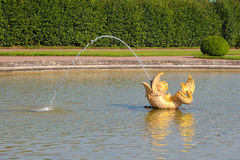 Fountain in the form of a gold fish at Peterhof Grand Palace garden. Peterhof, Saint-Petersburg, Russia Royalty Free Stock Photo