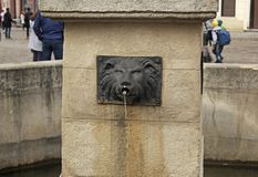 Fountain in the form of a lion`s head in Lviv, Ukraine stock photography