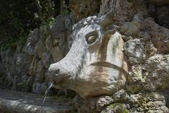 Fountain in the form of a stone head of a cow, elements of work by Antonio Gaudi. Fountain in the form of a stone head of a cow, elements of the work of Antoni royalty free stock images