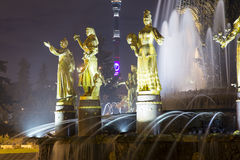 Fountain Friendship of Nations -- VDNKH All-Russia Exhibition Centre, Moscow, Russia Stock Image
