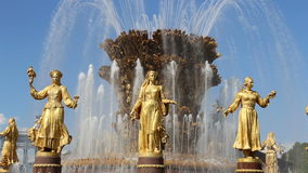 Fountain Friendship of Nations-- VDNKH, Moscow, Russia stock video