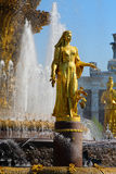 Fountain Friendship of Peoples at the Exhibition Center. Royalty Free Stock Image