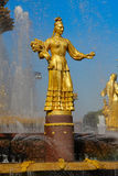 Fountain Friendship of Peoples at the Exhibition Center. Stock Photo
