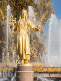Fountain of Friendship of Peoples, a fragment Stock Images