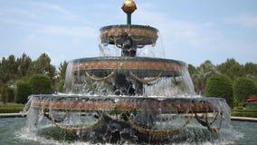 Fountain in front of Batumi University park, Georgia stock video