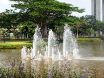 Fountain in garden. Close up royalty free stock photo