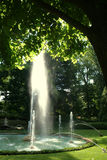 Fountain Garden. A pool with fountains cascading and misting in a beautiful shady garden, with a tree framing the top of the image Royalty Free Stock Photography