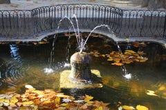 Fountain in garden Stock Images