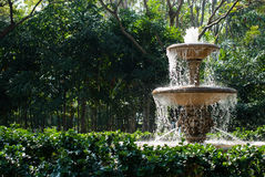 Fountain in garden Stock Image