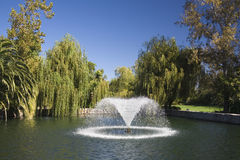 Fountain in a garden pond. Beautiful fountain in a garden pond on a sunny day stock images