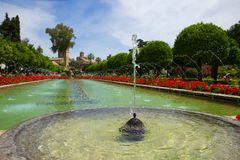 Fountain in Gardens at the Alcazar, Cordoba, Spain Stock Image