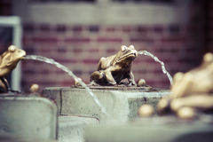 Fountain with golden lucky frog - the symbol of Torun city (Pola Royalty Free Stock Photos