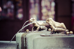 Fountain with golden lucky frog - the symbol of Torun city (Pola Stock Photography