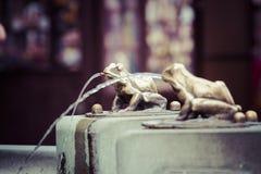 Fountain with golden lucky frog - the symbol of Torun city (Pola Stock Photography