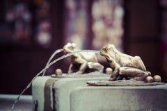 Fountain with golden lucky frog - the symbol of Torun city (Pola Stock Photo