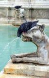 Fountain of Joy. Siena, Tuscany, Italy. Fountain of Joy - Medieval marble fountain in Siena. Panel of the Fonte Gaia, Piazza del Campo, Siena, Tuscany, Italy royalty free stock photo