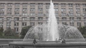 Fountain stock video