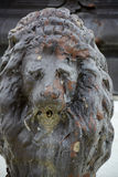 Fountain lion Stock Photo